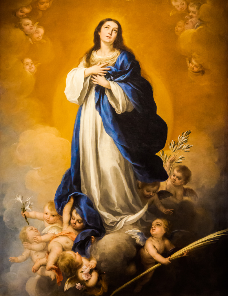 Feast Of The Immaculate Conception December 8 St Alphonsa
